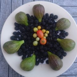 blackberry, blackberries, figs, tomatoes, yellow tomatoes, homegrown,